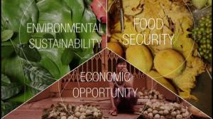 Picture: World Economic Forum
